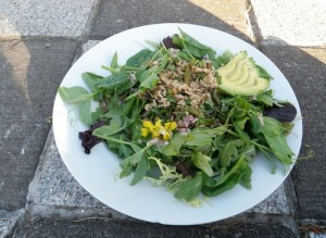 spring dinner salad with grilled asparagus, rice, avocado and broccoli flowers