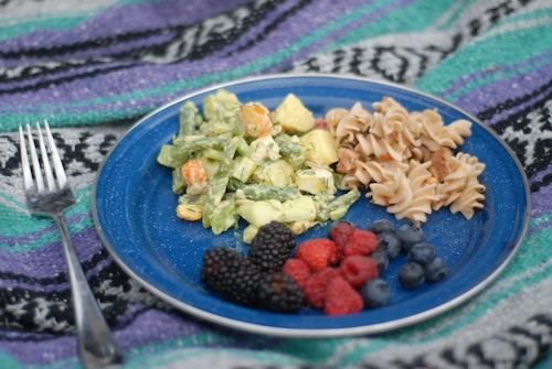picnic plate with berries and dilled green bean potato salad