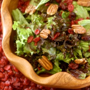 salad with dried cranberry, candied pecan, and raspberry viniagrette