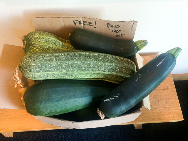 Free zucchini time at Winthrop Physical Therapy